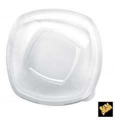 Tapa de Plastico Transp. para Plato PET 210mm (25 Uds)
