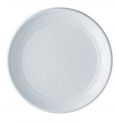 Plato de Plastico Llano Blanco PS 250 mm (100 Uds)