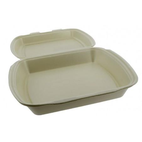 Envase Foam MenuBox 1C. Champagne 240x210x70mm (250 Uds)