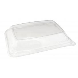 Tapa Cúpula PET Envase Caña de Azúcar 20x14x3cm (300 Uds)