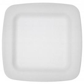 Plato Termico Foam Blanco Laminado 170 mm (600 Uds)