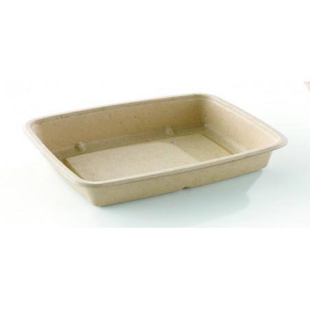 Envase Caña de Azúcar Rectangular 165x230x30mm (300 Uds)