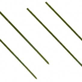 Pinchos de Bambu Verde Natural 150mm (200 Uds)