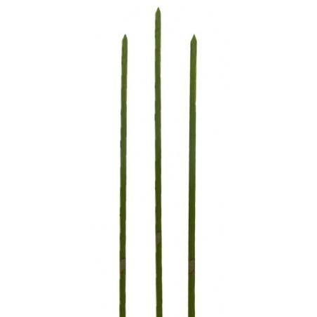 Pinchos de Bambu Verde Natural 180mm (5000 Uds)