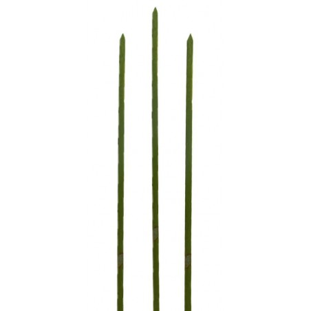Pinchos de Bambu Verde Natural 250mm (200 Uds)