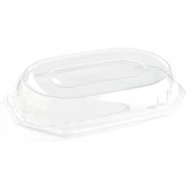 Tapa de Plastico para Bandeja de 46x30x7 cm (50 Uds)