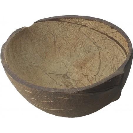 Bol de Coco Natural de 150ml (10 Uds)