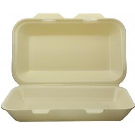 Envase Foam LunchBox Champagne 240x155x70mm (500 Uds)