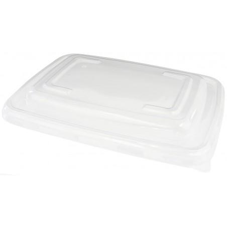 Tapa de Plastico PP para Envase de 230x165mm (150 Uds)