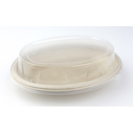Tapa Cupula de Plastico para Bandeja 240x170mm (50 uds)