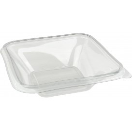 Bol de Plástico PET Impression 500ml 170x170x30mm (300 Uds)