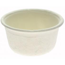 Tarrina de Caña de Azucar Blanca 60ml (250 Uds)