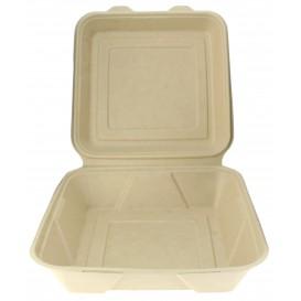 Envase MenuBox Caña de Azúcar 235x235x78mm (50 Uds)
