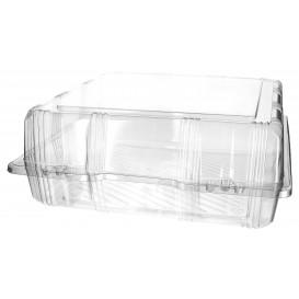 Envase Tapa Bisagra Repostería PET 25x25x10cm (220 Uds)