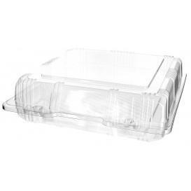 Envase Tapa Bisagra Repostería PET 20x20x6cm (20 Uds)