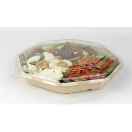 Tapa Plastico PET para Envase Hexagonal 230x230mm (50 Uds)