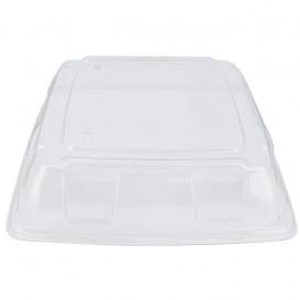 Tapa Plastico PET Transparente Bandeja 31x31cm (5 Uds)