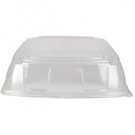 Tapa Plastico PET Transparente Bandeja 40x40cm (25 Uds)