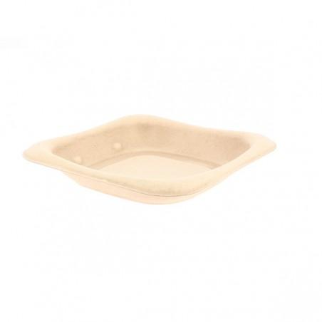 Envase Caña de Azúcar 14x14cm (50 Uds)
