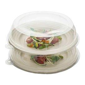 Tapa de Plastico Transparente para Plato 23x5cm (21 Uds)