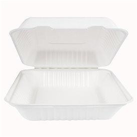 Envase Bisagra Caña de Azúcar + PLA Blanco 23x23x7,5cm (200 Uds)