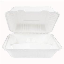 Envase Bisagra Caña de Azúcar + PLA 3C 23x23x7,5cm (50 Uds)