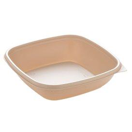 Envase de Plastico PP Crema 500ml 16,5x16,5x4cm (300 Uds)